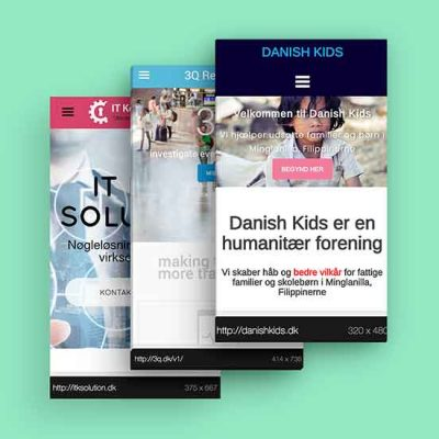web-design-developement-wordpress2